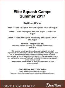 David Lloyd Purley Summer Camp 2017